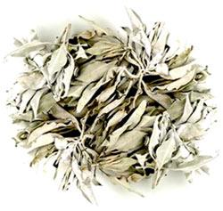 White Sage Leaf - Loose