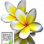 Handmade Soap - Monoi de Tahiti Tahitian Gardenia Soap