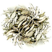 White Sage Leaf - Loose